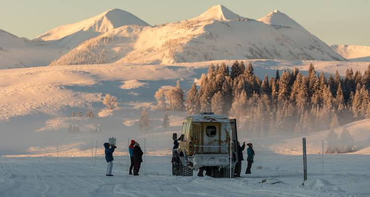 Yellowstone's Winter Wonders: A Snow Season Safari - TourMappers