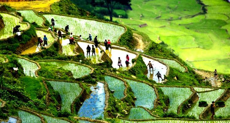 Seven Days Discover Real Charm North Vietnam - Vietnam Real Tour