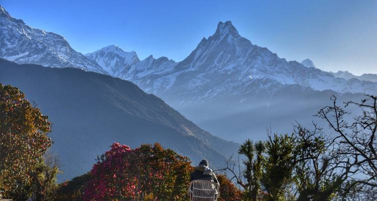 Ghorepani Poonhill Trek in Nepal 09 Days- Experience Annapurna Himalayas  - Scenic Nepal Treks & Expedition Pvt. Ltd