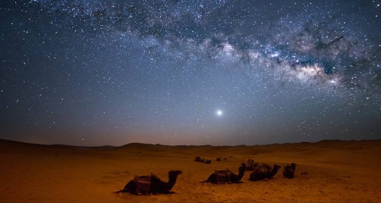 Morocco Meteor Shower - 9 days - On The Go Tours