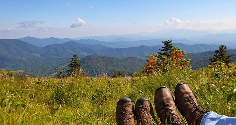 Mount Sterling Appalachian Loop - Wildland Trekking