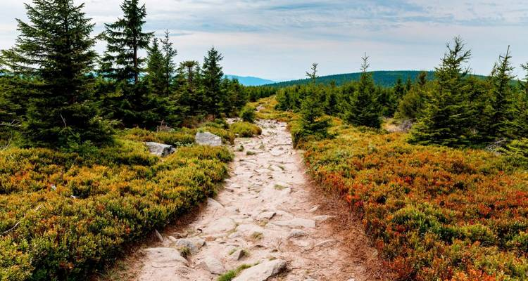 Krkonose: Giant Mountains of Czechia - The Natural Adventure Company