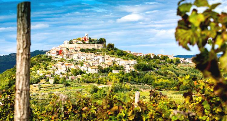 Trails and Wines of Istria - The Natural Adventure Company
