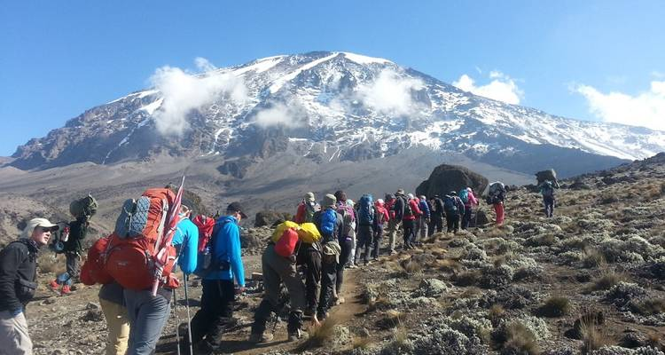 Kilimanjaro Climb Lemosho Route 8 Days - Kilimanjaro Wonders Expedition Safari