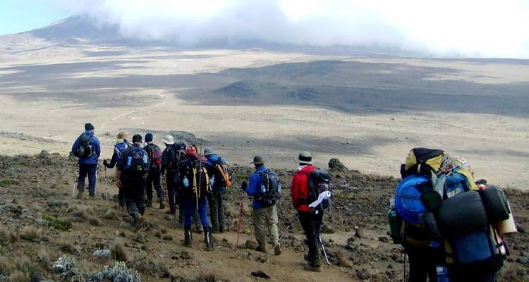 Marangu Route 6 Days 5 Nights  - Migration Venture Africa