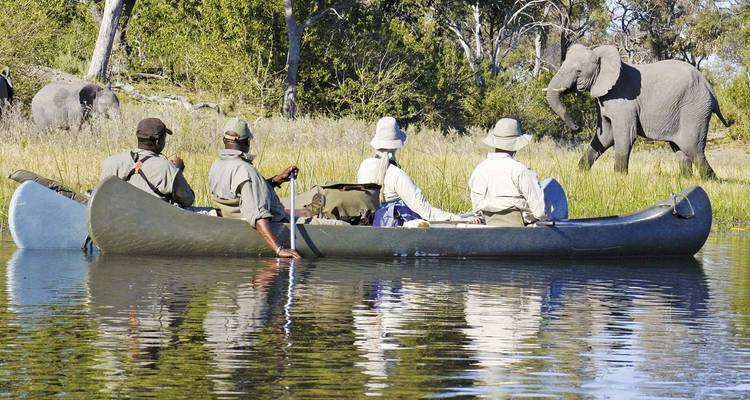 Cape Town to Okavango Delta 23 Days - Scenic Luxury Cruises & Tours