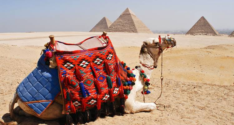 8-Day Around Egypt (5 stars & Domestic Flights) - Vacations to go travel