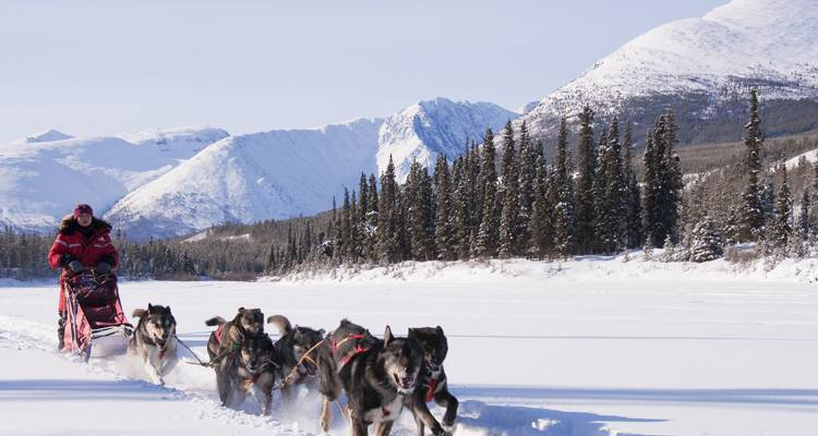 Yukon Winter Dream | Active Winter Adventure - Arctic Range Adventure