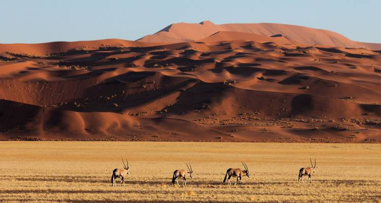 4-Day Sossusvlei & Swakopmund Camping - Discovery Transfers and Tours