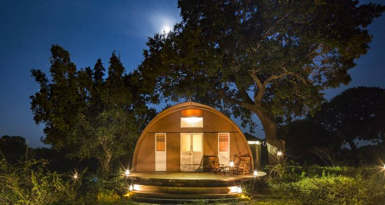3-Day Luxury Glamping in Yala National Park - Beyond Escapes