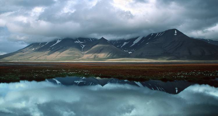 Spitsbergen Explorer: Wildlife Capital of the Arctic - Quark Expeditions