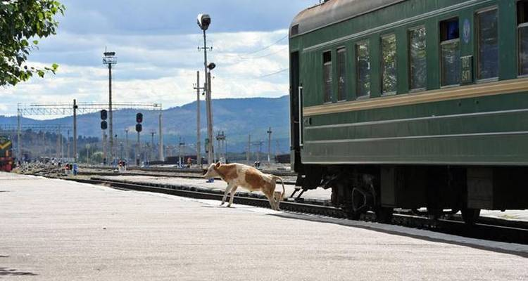 The Trans Siberian Railway with China and Mongolia (fro... - Sundowners Overland