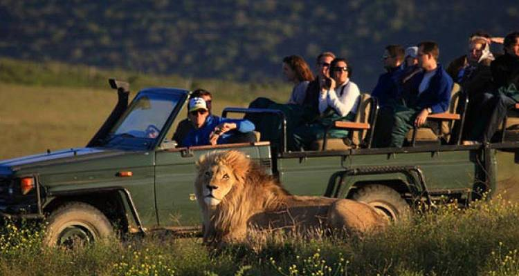 Wildlife and Safari - Hotspots2c