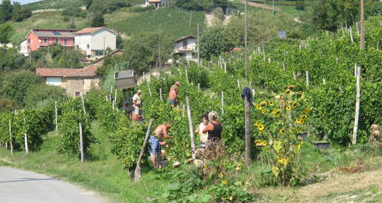 Headwater - Cycling the Wine Villages of Piedmont, Self-Guided - Exodus Travels