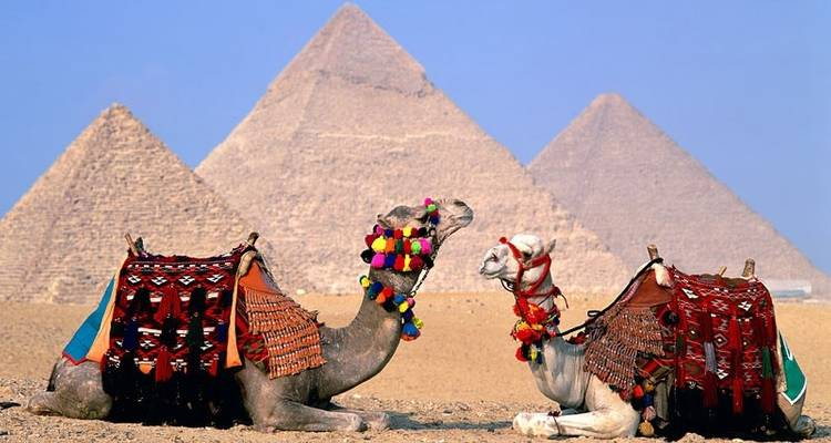 5 Days Pyramids and El baharia Oasis - Ancient Egypt Tours