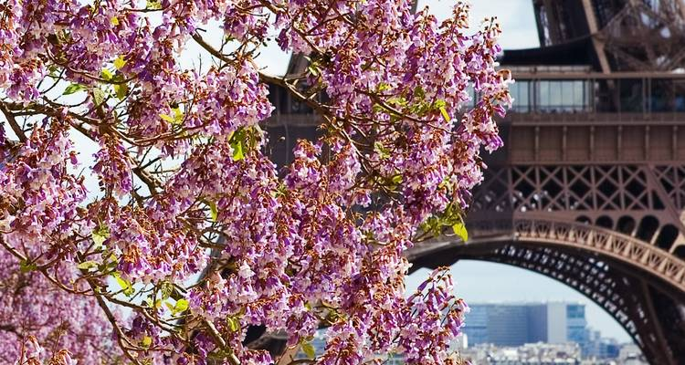 Paris & Normandy (Paris to Paris, 2020) - Uniworld Boutique River Cruise Collection