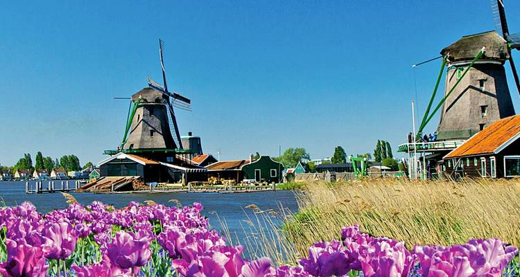 Tulips & Windmills (Amsterdam to Antwerp, 2020) - Uniworld Boutique River Cruise Collection