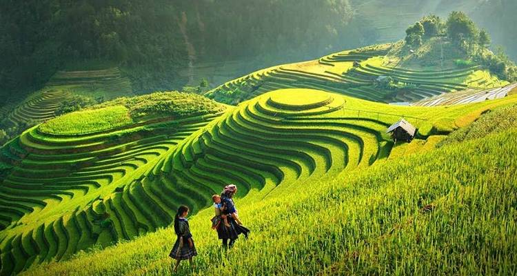 Sapa 3 Days 2 Nights Trekking Tour From Hanoi (2 Nights in Hotel) - Vietnam Travel Top