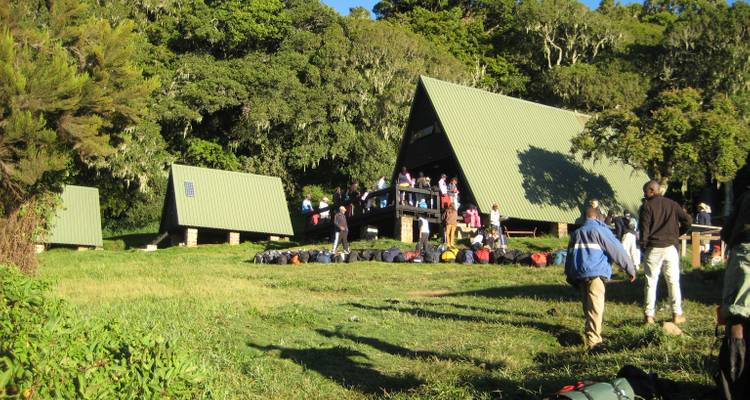 Kilimanjaro Short Hike 4 Days - Nomadic Adventures