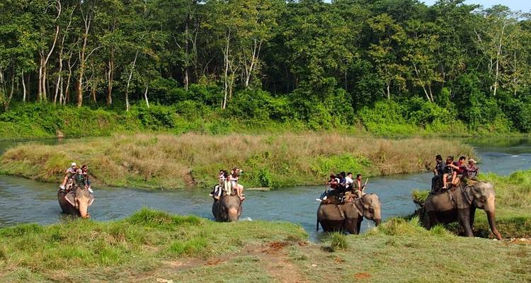 Jungle Safari In Nepal - Nepal Holiday Treks And Tours