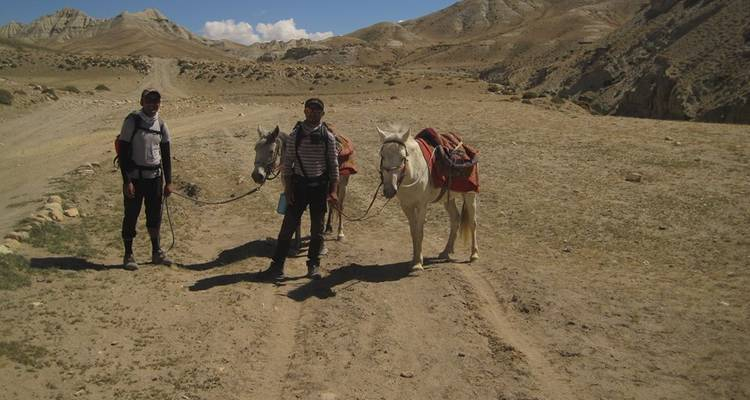Upper Mustang Horse Riding Holiday Nepal  - Down to Earth Adventure