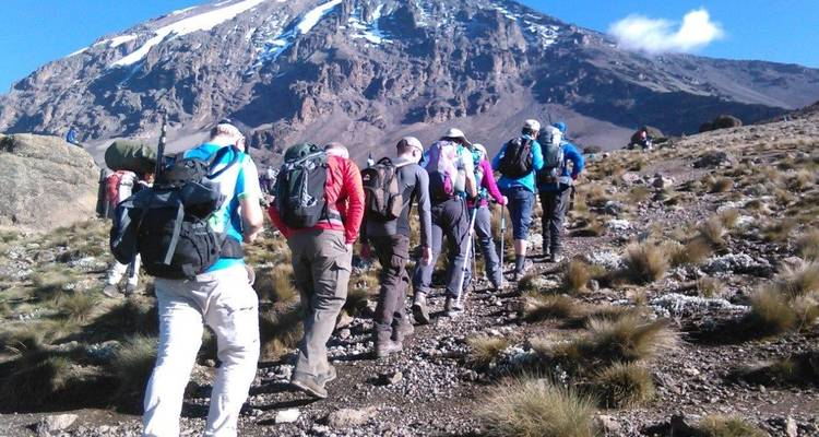 6 Days Climbing Mt Kilimanjaro via Machame Route - Perfect Wilderness Tours And Safaris