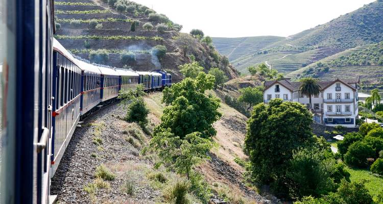 Porto & Gourmet Train Experience + Douro Valley Vineyards + Tour + Michelin Dinner + Transfers - Portugal Travel Center