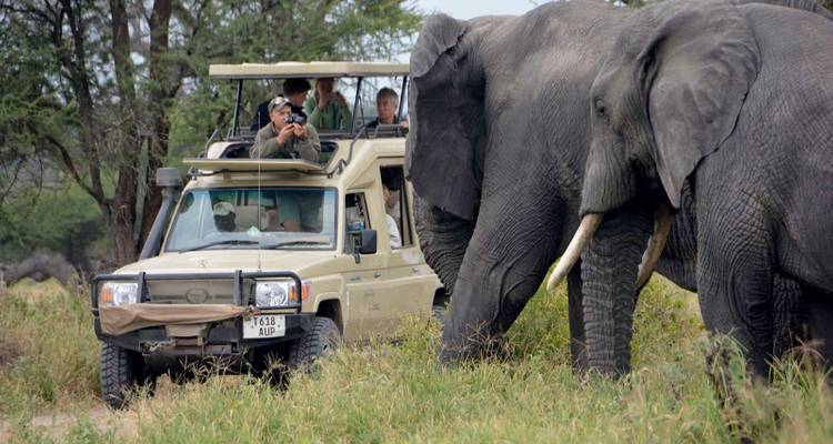 4 Days Tanzania Budget Camping Safari - Leken Adventure