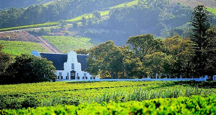Cape Town - Winelands - Garden Route for Wine Lovers: 5 Day Tour - Explore South Africa