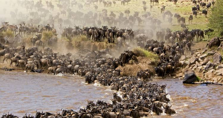EXPERIENCE THE GREAT WILDBEAST MIGRATION - Ultimate African Safaris