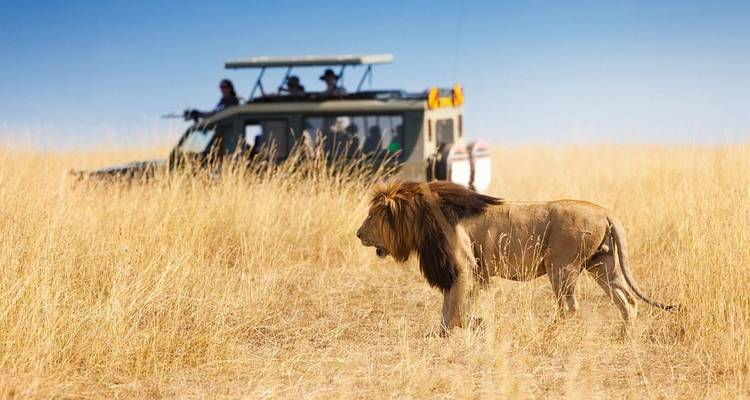 6 Days Camping Safari - Masai Mara, Lake Nakuru, and Amboseli  - Ultimate African Safaris