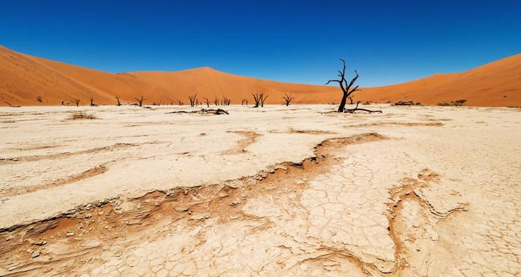 8-Day Sossusvlei, Swakop, Damara Land & Etosha NP (Camping) - Discovery Transfers and Tours