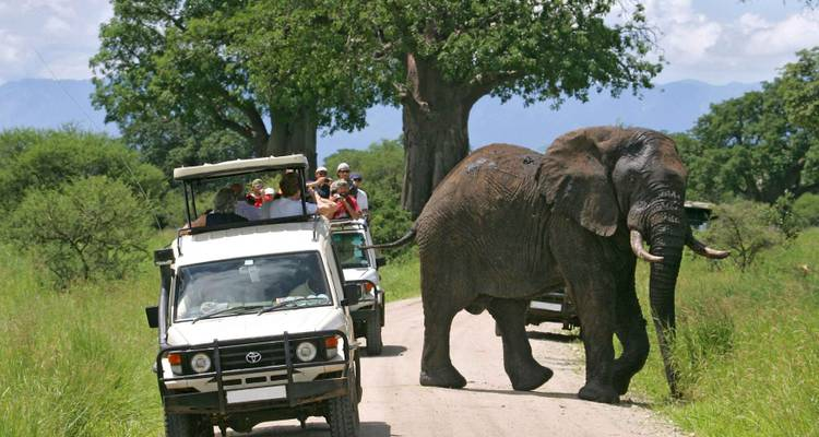 7 Day Breathtaking Kenya Big 5 Safari - Gracepatt Ecotours Kenya