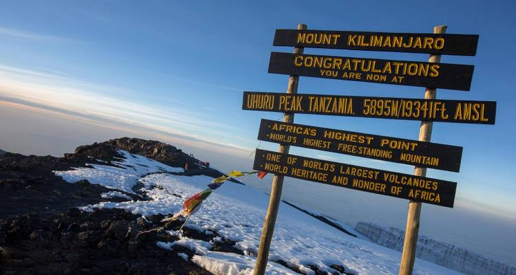 8 Days: Mount Kilimanjaro Expedition - Lemosho Route - Steppe Dogs Adventures Ltd