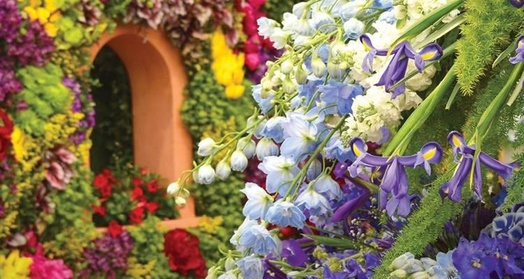 Flower Show 2020.Chelsea Flower Show Reverse 2020