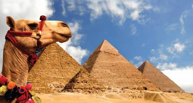 Egyptian Explorer - 8 days - On The Go Tours