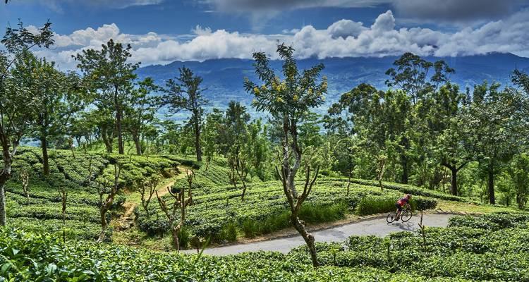 Sri Lanka Spice Trails - SpiceRoads Cycle Tours