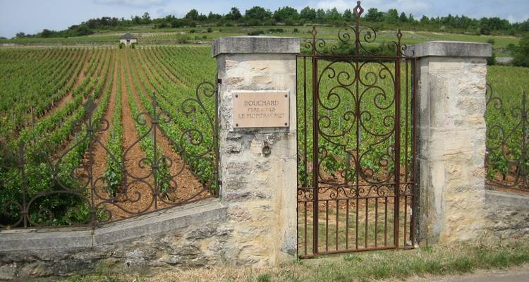 Burgundy Self-Guided Walking - Butterfield & Robinson