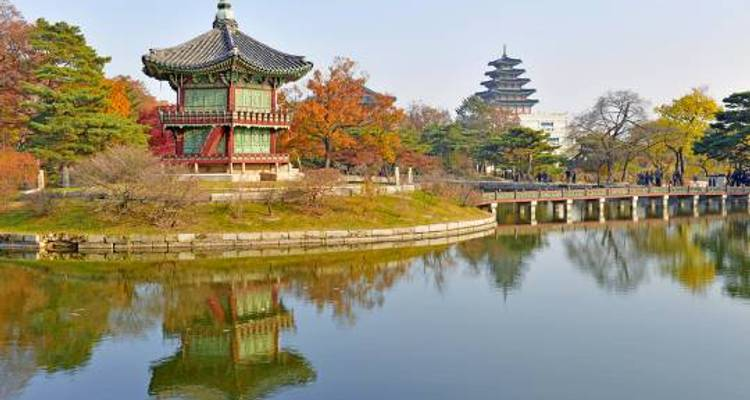 South Korean Express - 7 days - On The Go Tours