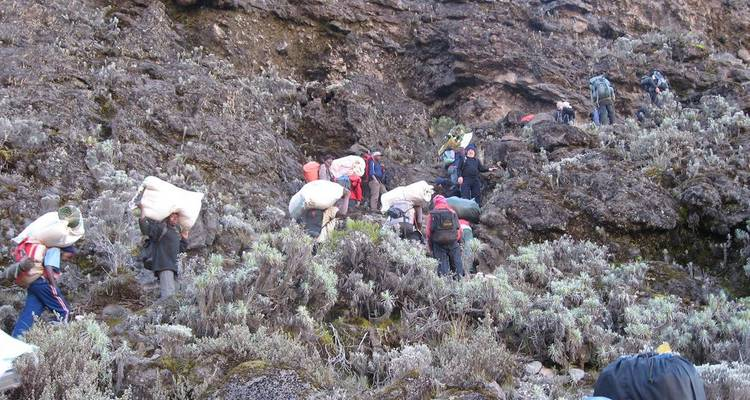 Mt. Kilimanjaro: Lemosho Crater Route - Real Life Adventure Travel