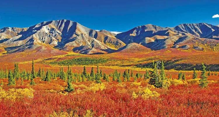 Alaska, Yukon & Rockies Panorama - Scenic Luxury Cruises & Tours