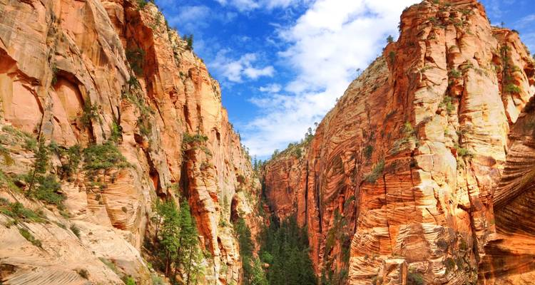 Private Zion Canyon Day Tour for up to 5 guests - Bindlestiff Tours