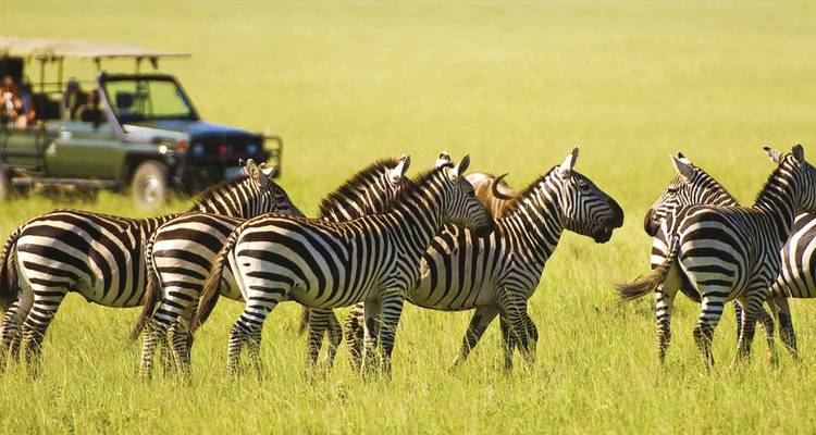 Kenyan Discovery - Scenic Luxury Cruises & Tours