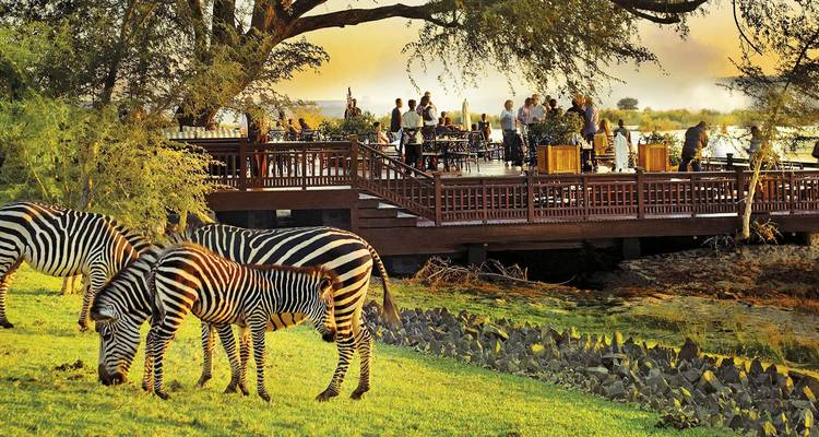 Southern Africa Discovery 12 Days - Scenic Luxury Cruises & Tours