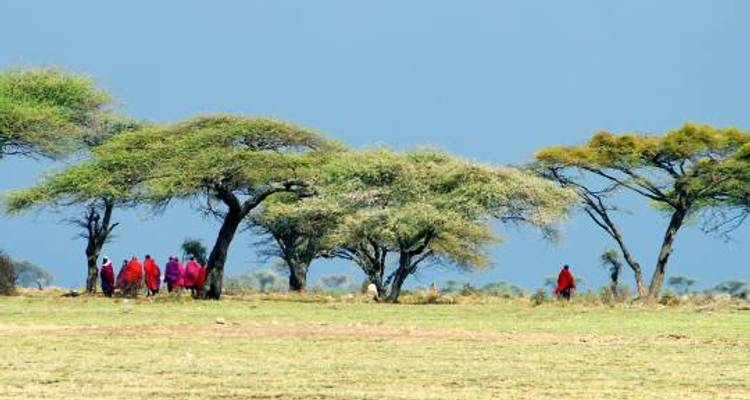 East Africa Encompassed - 16 days - On The Go Tours
