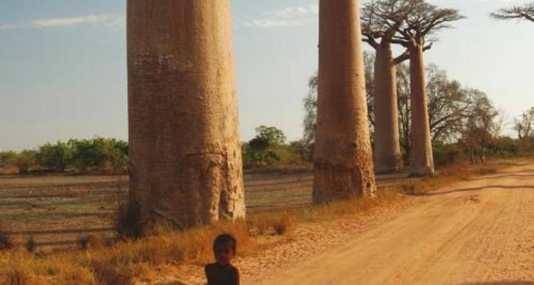 Madagascar Adventure - World Expeditions