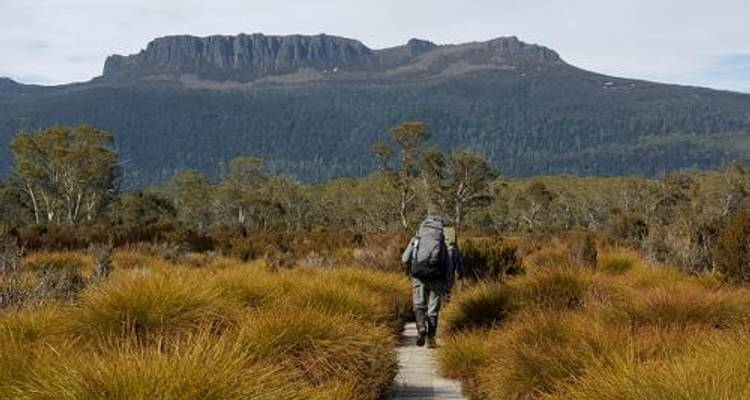 The Overland Track - Tasmanian Expeditions