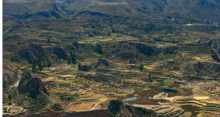 Colca Canyon and Arequipa - World Expeditions