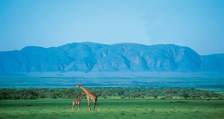 Classic Tanzania Safari - Exodus Travels