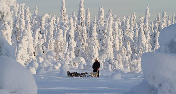 Finnish Wilderness Week - Exodus Travels